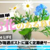 花のサブスクbloomee(ブルーミー)口コミ・評判はいかに?!あいみょんに憧れて花のある暮らし試してみた!